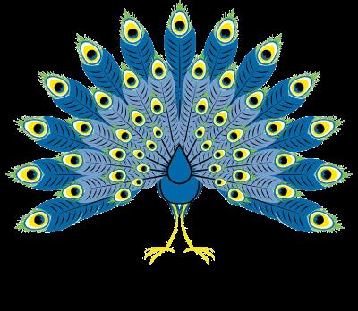 peacock_trans_web
