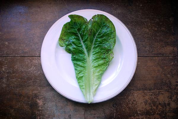 heart lettuce